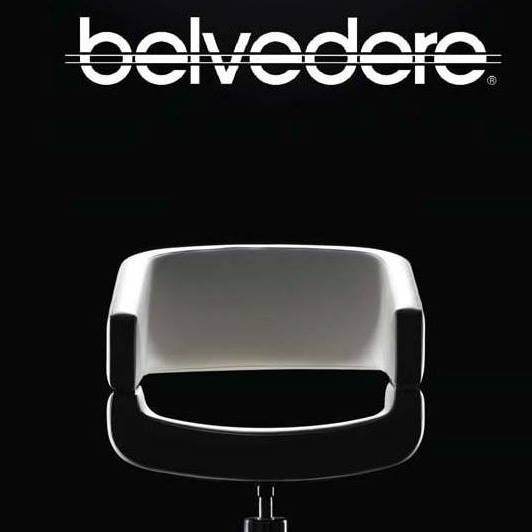 Belvedere Salon Chair